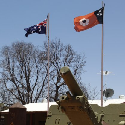 Flags In Front Of The Tank